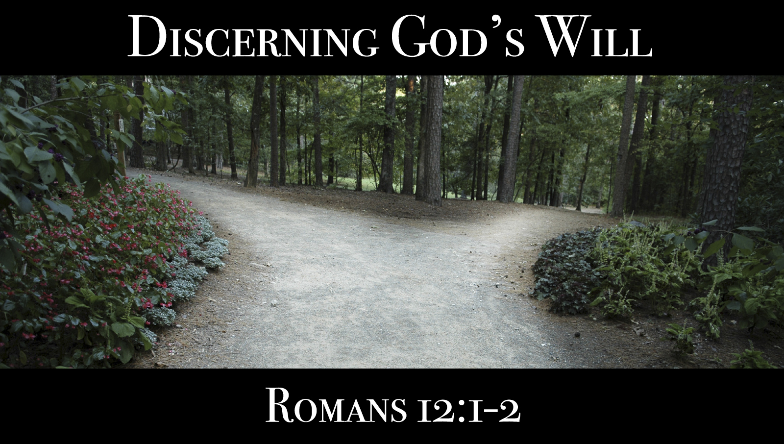 Discerning God's Will